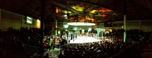 Muay Thai fights.